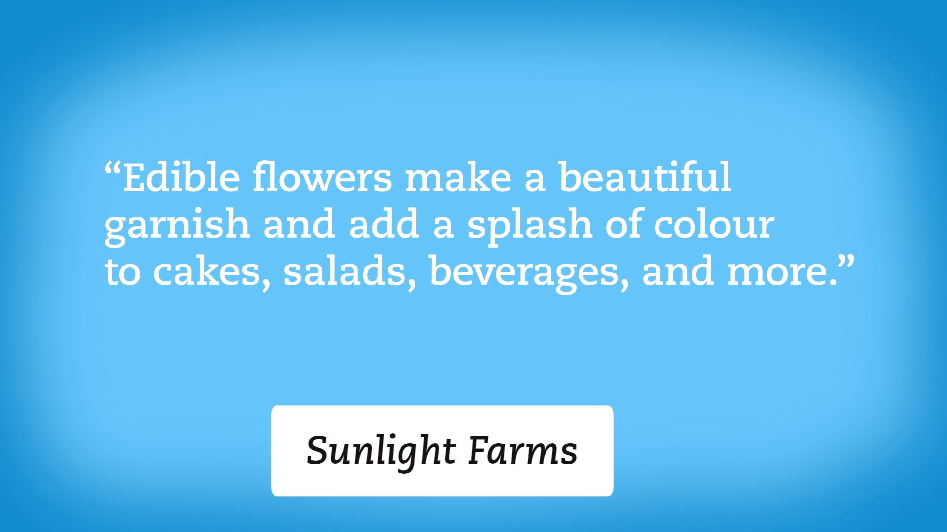 Edible flowers make a beautiful garnish and add a splash of colour to cakes, salads, beverages, and more.