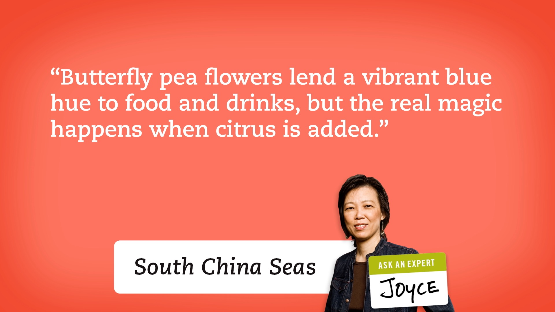 """Butterfly pea flowers lend a vibrant blue hue to food and drinks, but the real magic happens when citrus is added."" - Joyce, South China Seas"